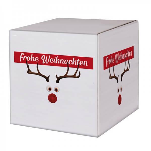 """bedruckte Weihnachtskartons """"Mr. Twinkle"""" 300x300x300mm, B 1.30 w"""