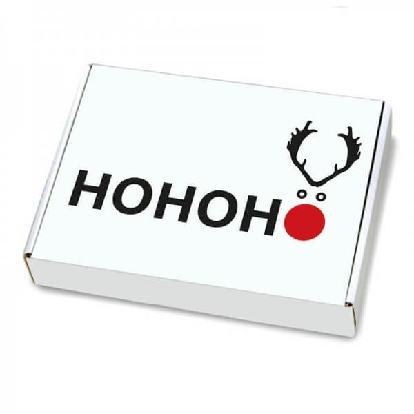 Maxibriefkartons mit Weihnachtsmotiv 350x250x50 mm Elchnase