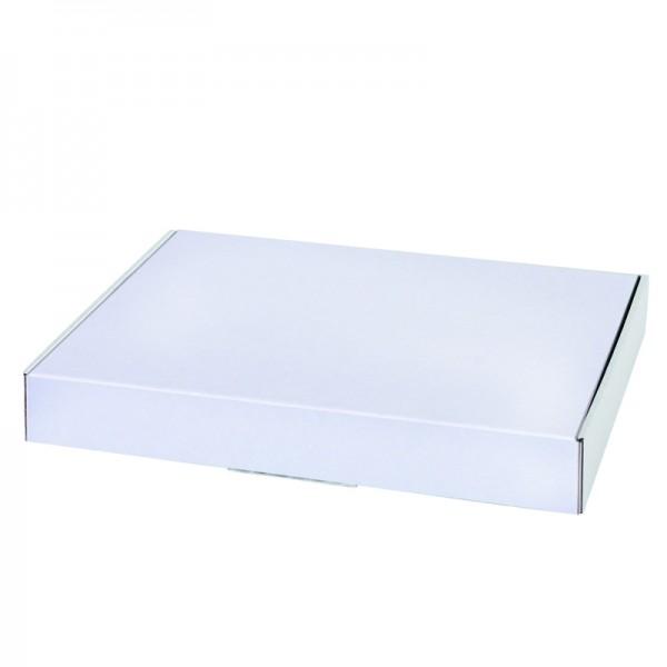 Maxibrief 250x174x50 mm weiß geschlossen