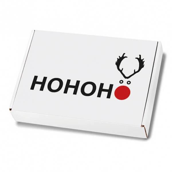 Weihnachtskartons Maxibrief Elchnase 250x174x50 mm